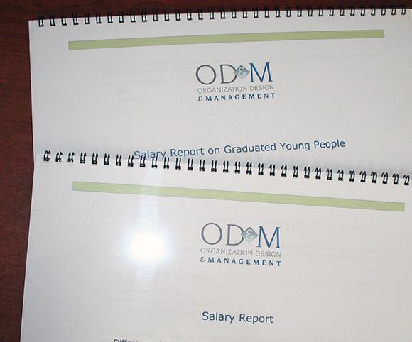 Dati by OD&M Consulting sulle retribuzioni degli italiani