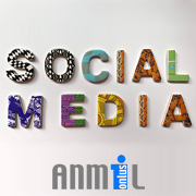 Corsi per Social Media Manager - CORSO FSE ANMIL